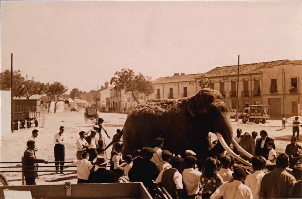 tracción en los Egidos de la Feria hacia 1950