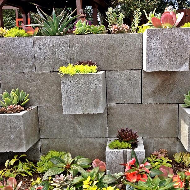 Using cinder block as planters
