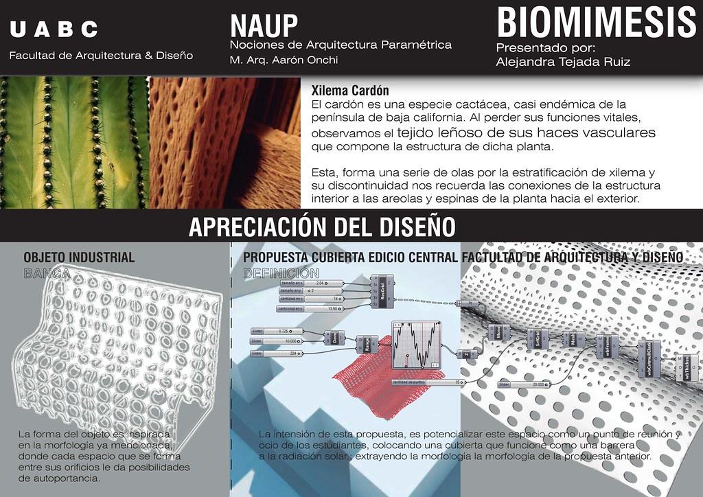 Naup alejandra tejada 2012 2 proyecto final de curso Arquitectura y diseno uabc
