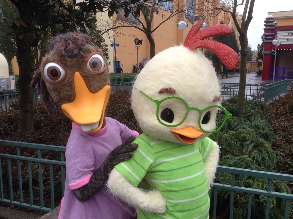 Uncategorized Chicken Little And Abby meeting the adorable chicken little and abby mallard flickr