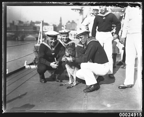 German sailors with a wallaby on board the German cruiser KOLN | by Australian National Maritime Museum on The Commons