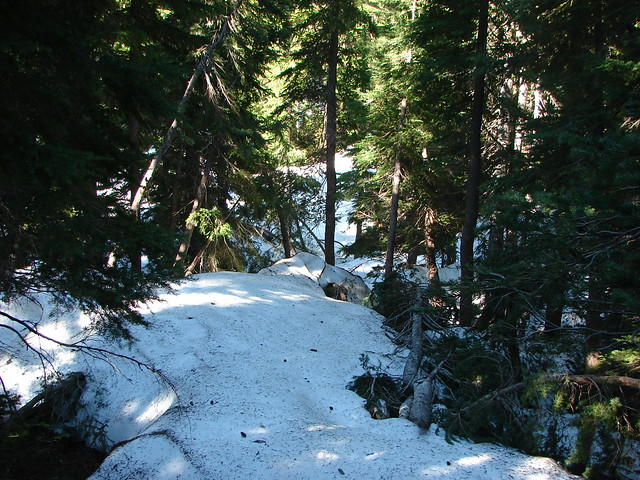 Snow along the Benson Lake Trail