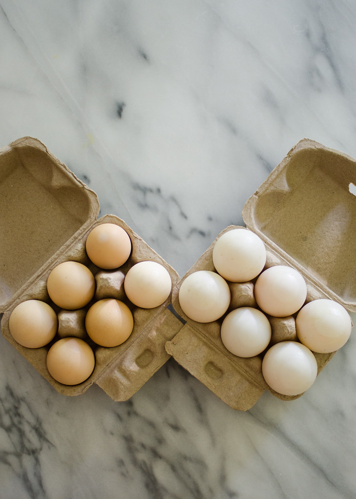 Duck Eggs 101 | Buttered Side Up