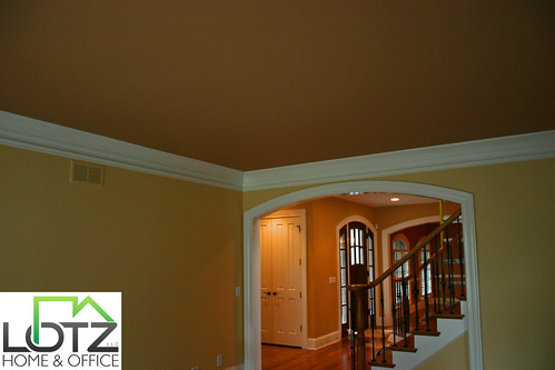 Interior Painting Naperville Painting Company Lotz