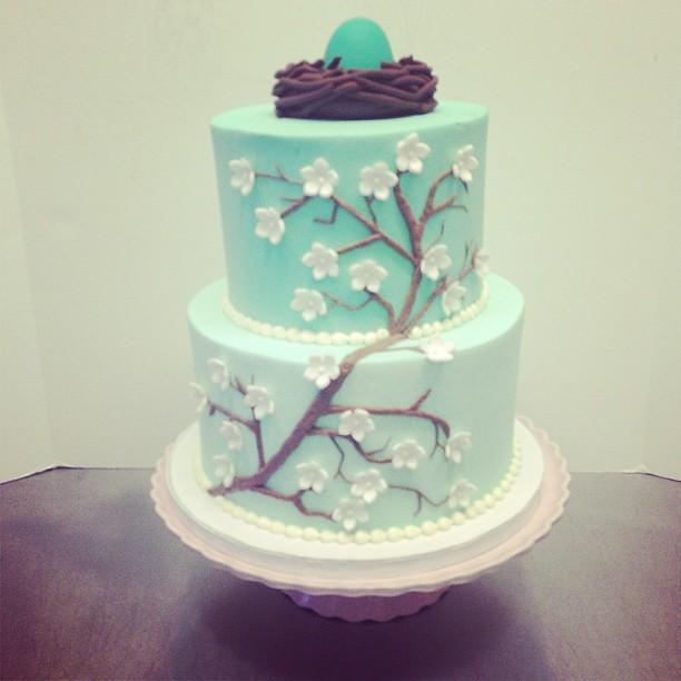 Cake Nest