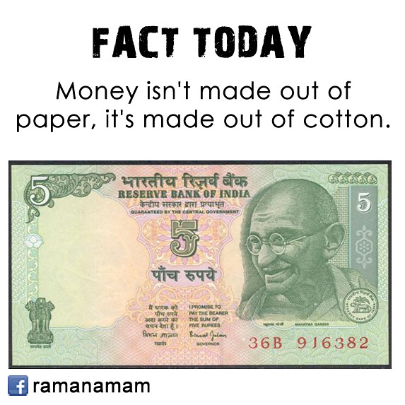 cotton paper for money