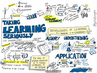 Taking Learning Seriously by Lee Shulman [viz notes] | by giulia.forsythe