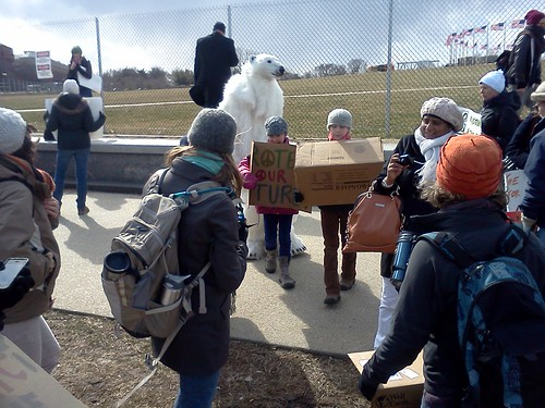 Climate Rally Polar Bear | by 350mass