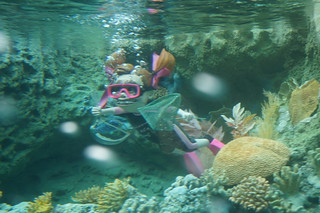 Darla in the Finding Nemo Submarine Voyage | by Disney, Indiana
