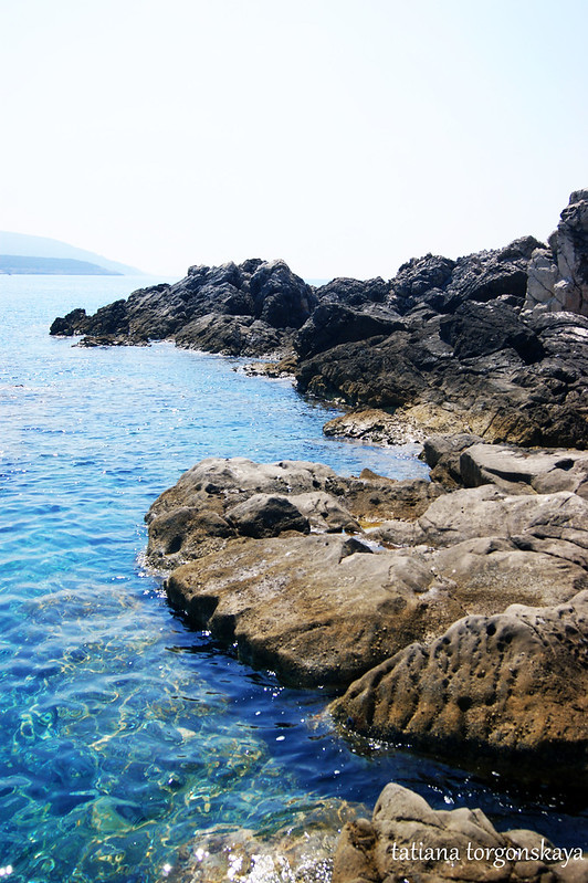 На острове Ластавица