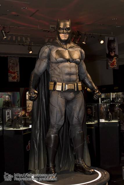 BATMAN100_HotToys_2-25