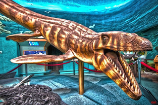 Museum, Exhibit……HDR | by Jose R. Sandoval ONYXONE Photography