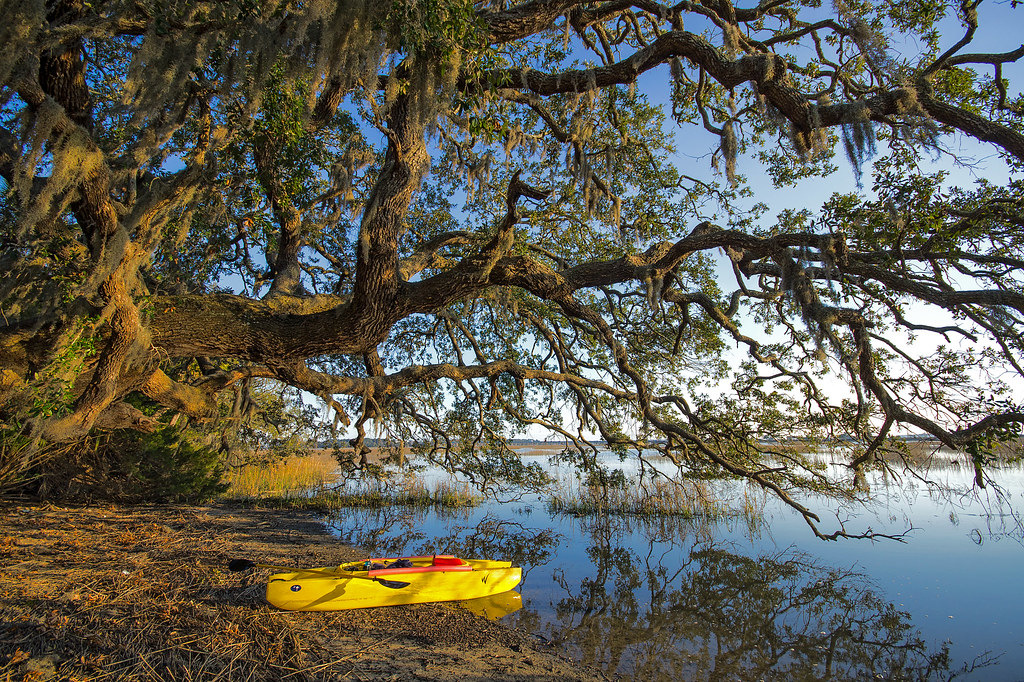 Kayak From Oak Island To Bald Head Island Forum