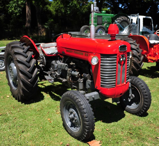 1964 Massey Ferguson 65 : Massey ferguson flickr photo sharing