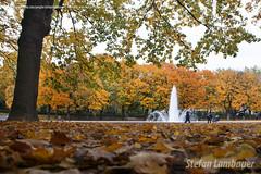 Parque Cinquentenário
