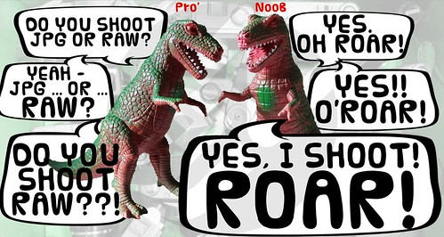 Do You Shoot JPG or ROAR?