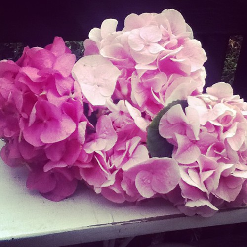 ~Pink Hydrangeas~ | by ~Romantic~Vintage Home~