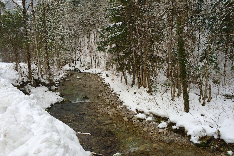 Údolí říčky Pielach