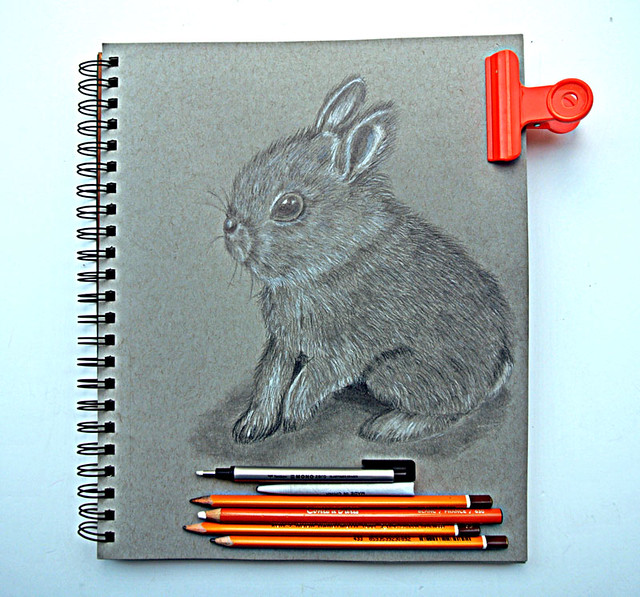 Pencil-drawing-of-a-cute-bunny