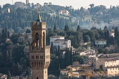 Firenze - Torre dell'Orologio vista dal Campanile di Giotto