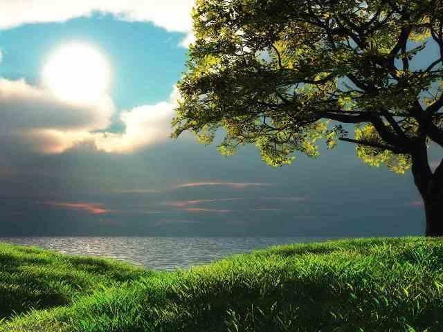 Digital Scenery Hd Wallpaper Backgrounds