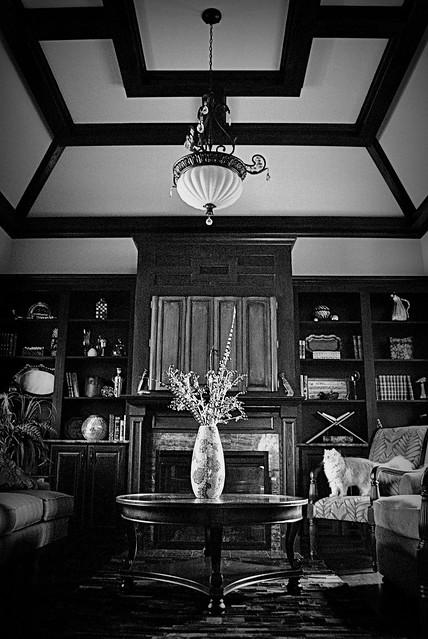 Living Room Pendant Shade