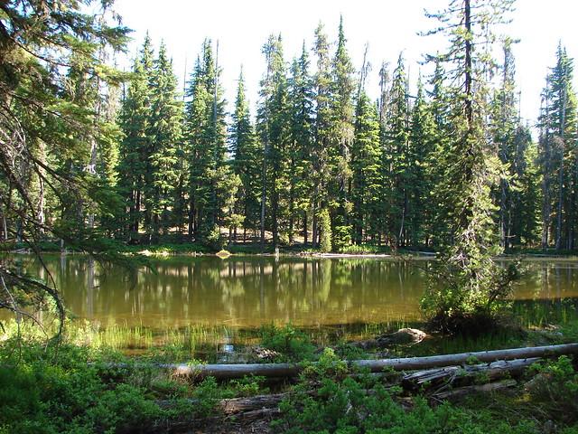Colt Lake