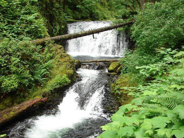 Middle and Lower Dutchman Falls