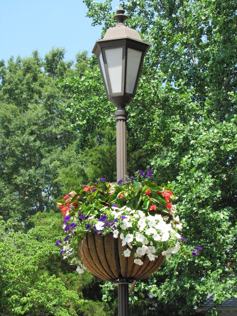 Gloucester Main Street Flower Light Pole Basket By Chuck
