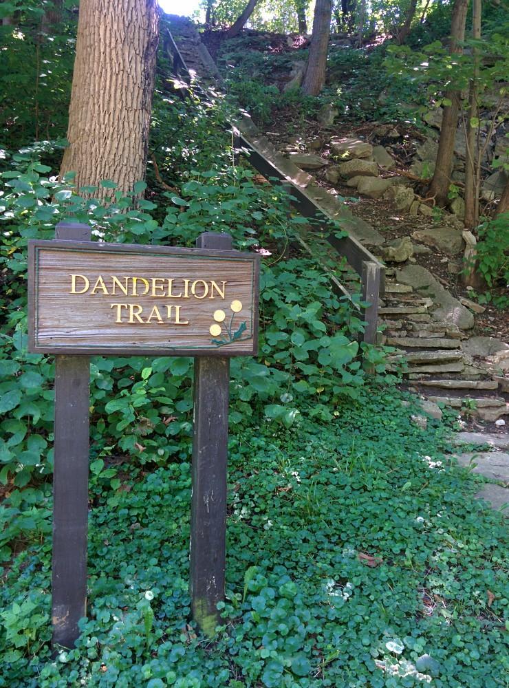 Dandelion Trail