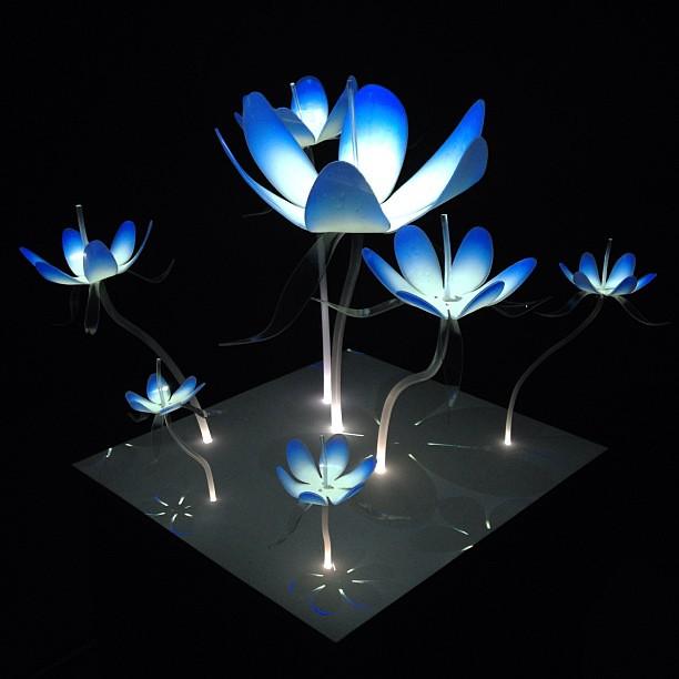 Flower light projection flowers kinetica art lights for Light up flower lamp