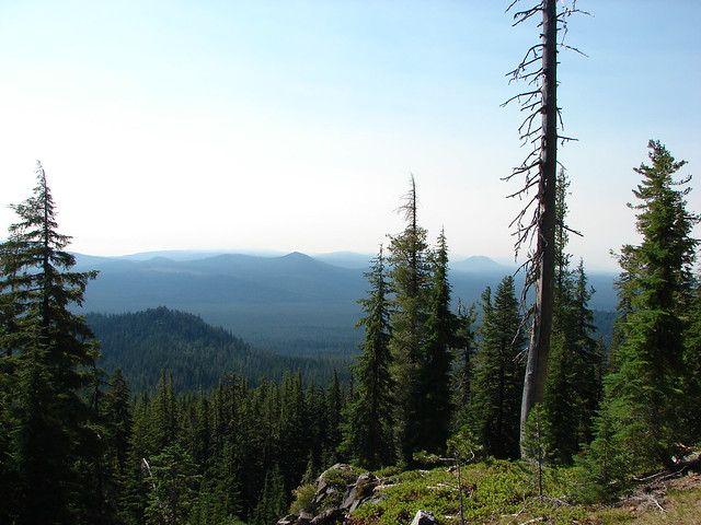 View from the Mt. Bailey Trail