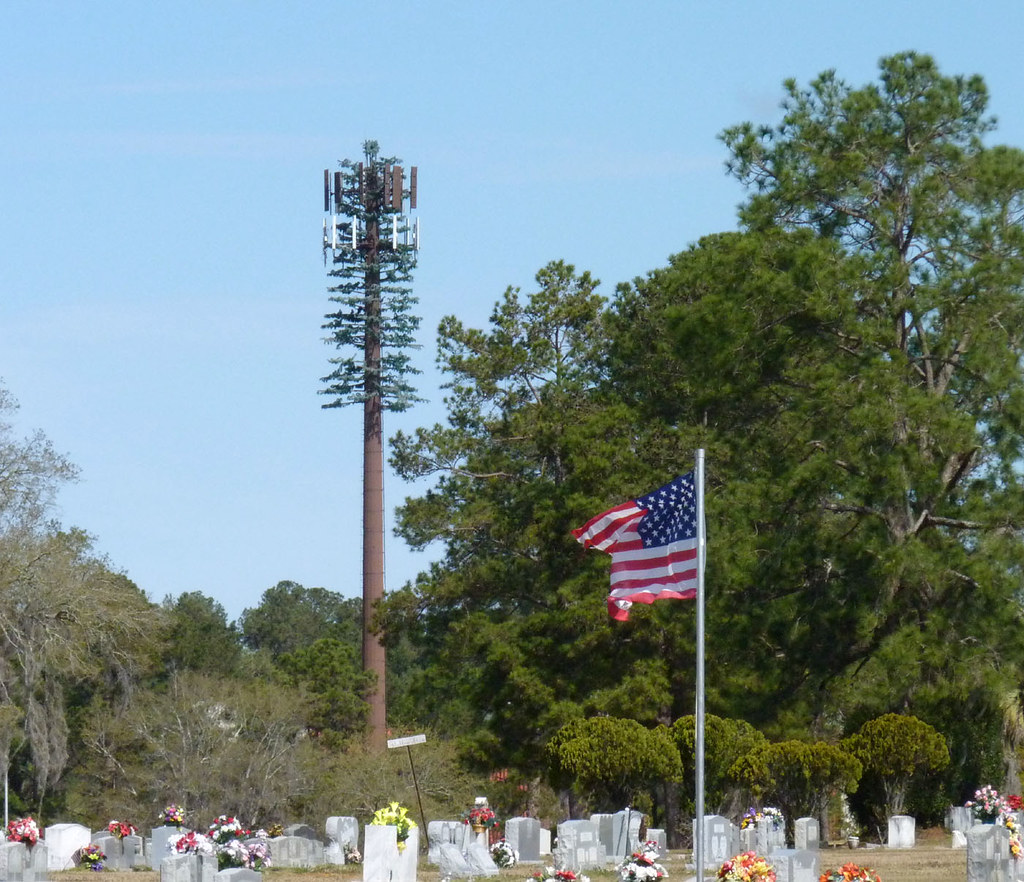 Cell Phone Tower Disguised To Look Like Pine Tree Flickr
