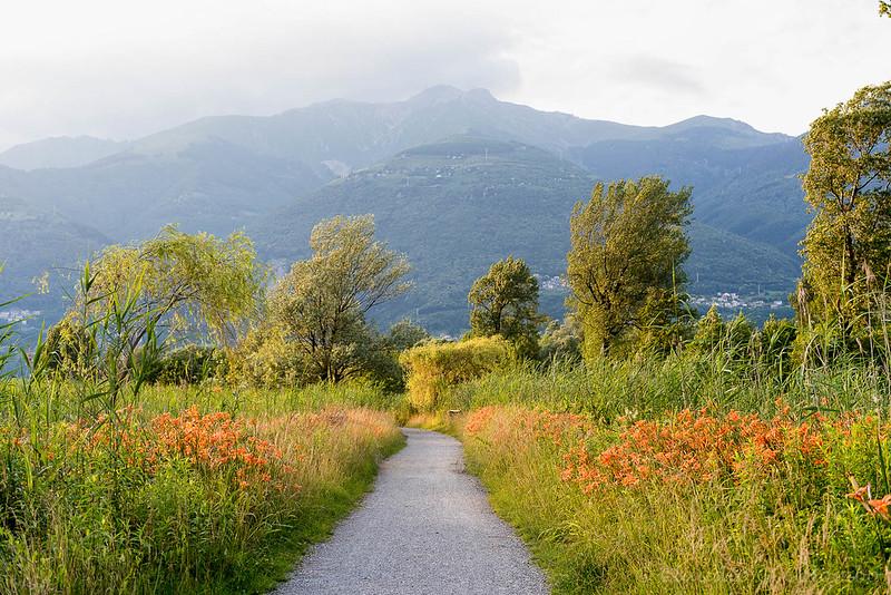 Ciclogiro Clodiano 2016 - Tappa 4: Lecco - Verceia