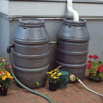 Backyard rain barrels
