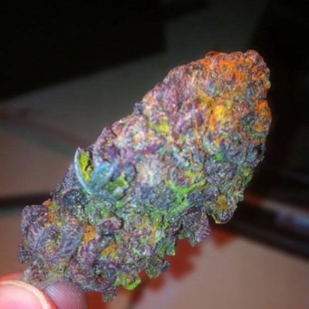 Purple Grapes Weed Weed Smoke Kush Grapes