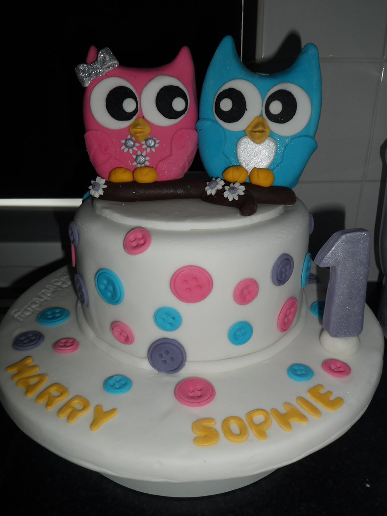 Twins 1st Birthday Cake With A Fondant Twin Owl Topper