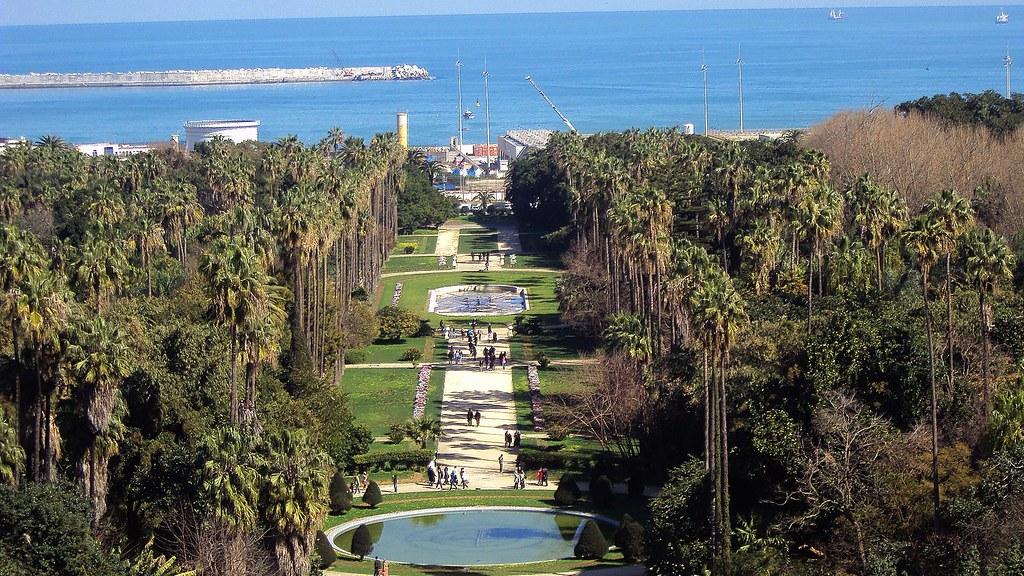 Alger le jardin d 39 essai du hamma le jardin d 39 essai du for Jardin d essai alger