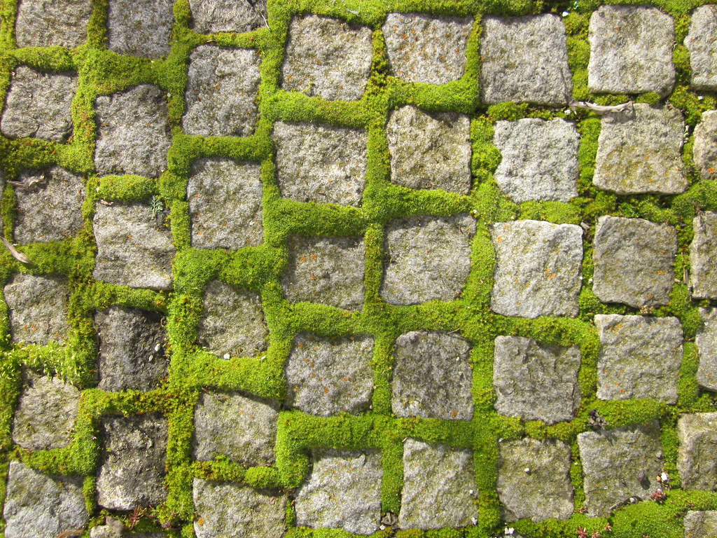 cobblestone texture | Daniel | Flickr