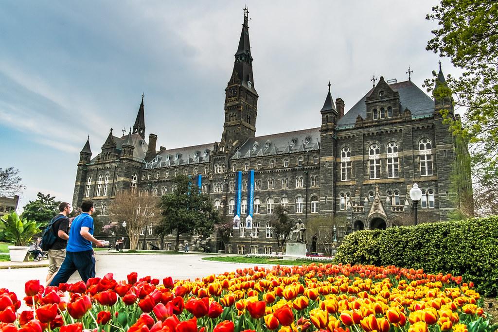 Georgetown university short essay length