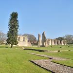 Glastonbury Abbey 7