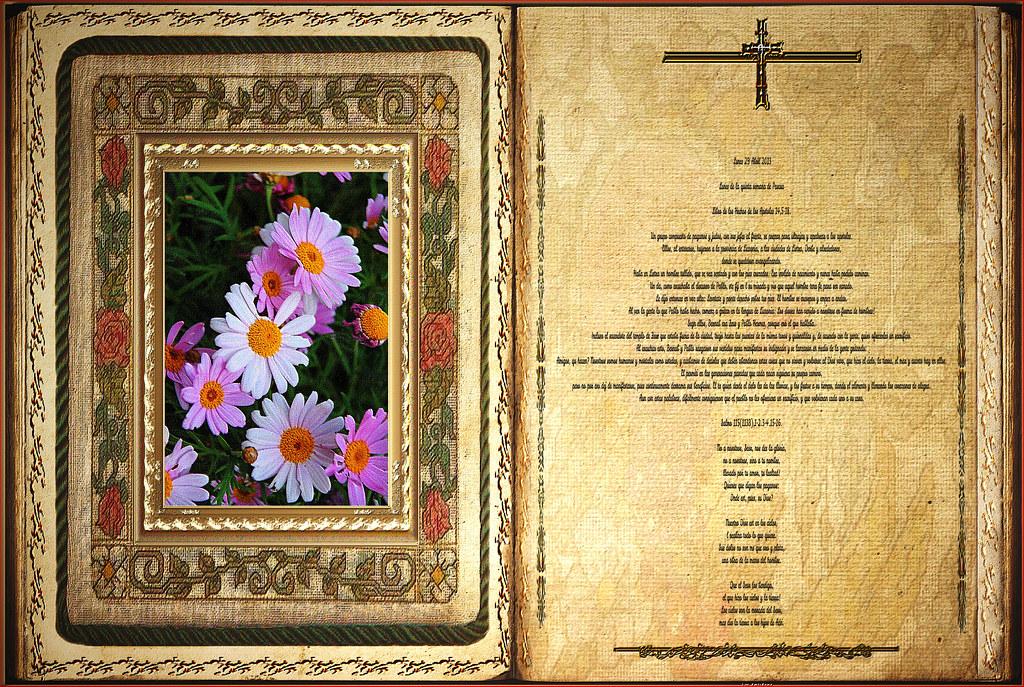 Resultado de imagen para Hechos de los apóstoles (14,5-18)