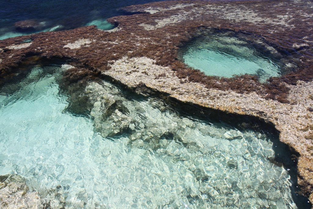 My Natural Swimming Pool Rottnest Island Westen Austral