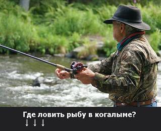 прогноз клева рыбы в когалыме