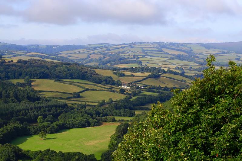 Những mảng ruộng dưới thung lũng