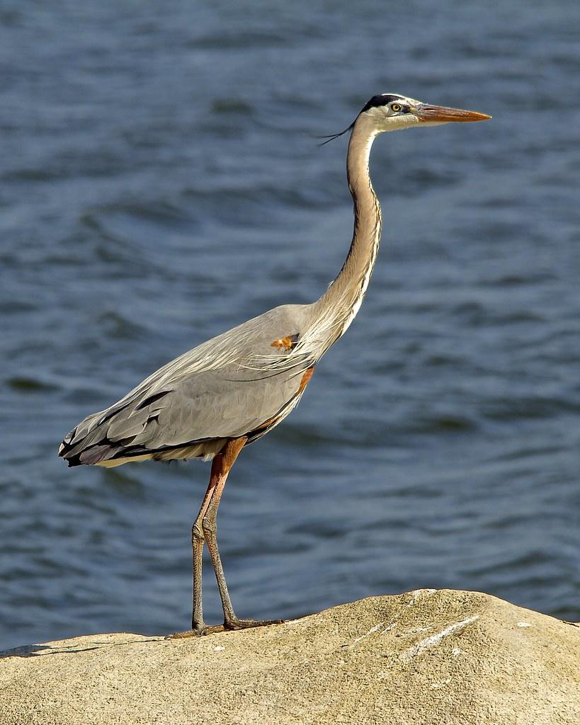 E Blue Heron Blvd Riviera Beach Florida