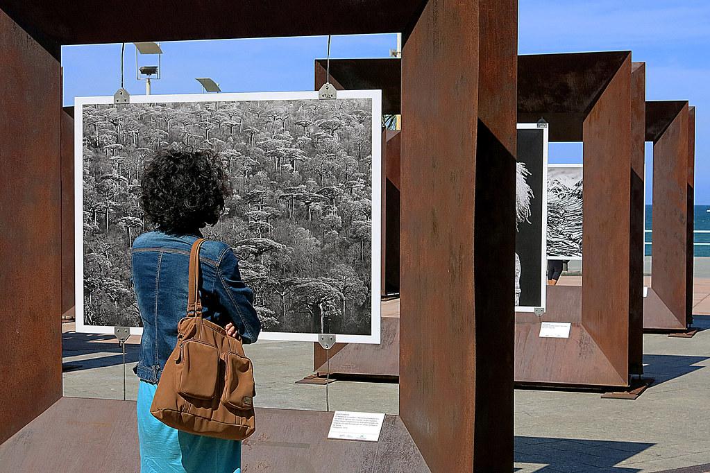 Contemplando la exposición de Sebastião Salgado