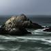Seal Rocks 8