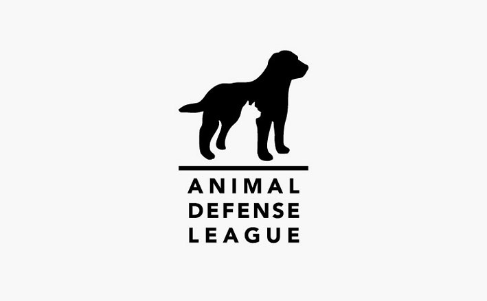 Animal Shelter Design Logo