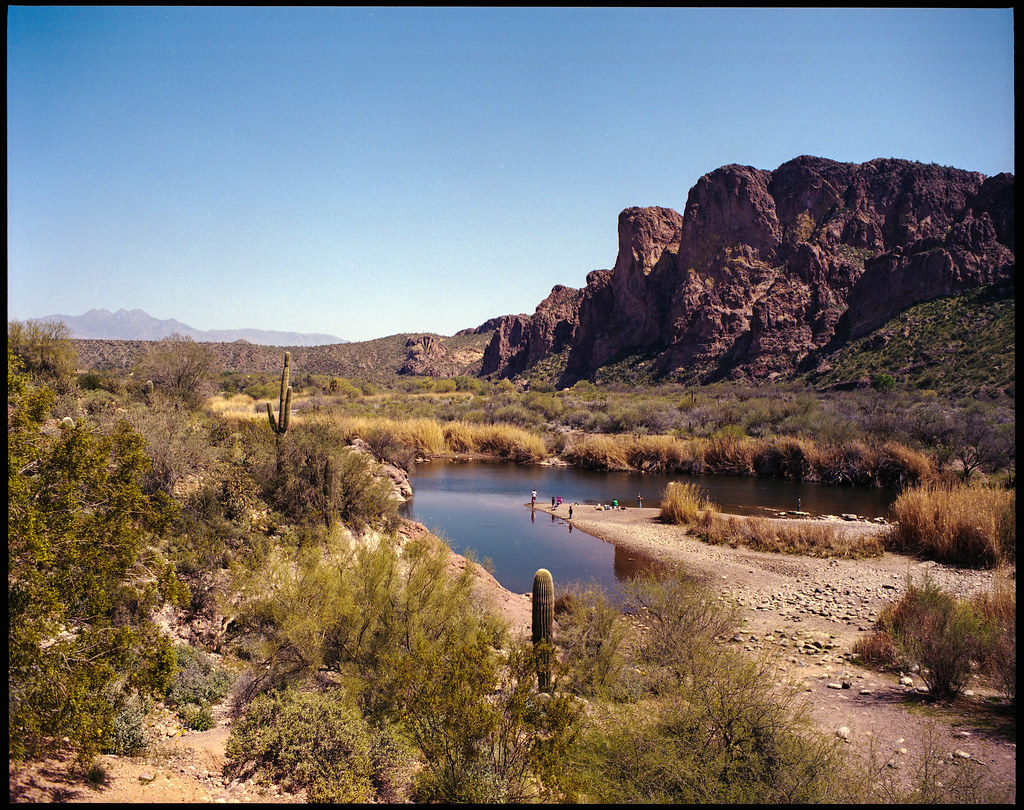 Fishing on the salt river location tonto national for Salt river fishing